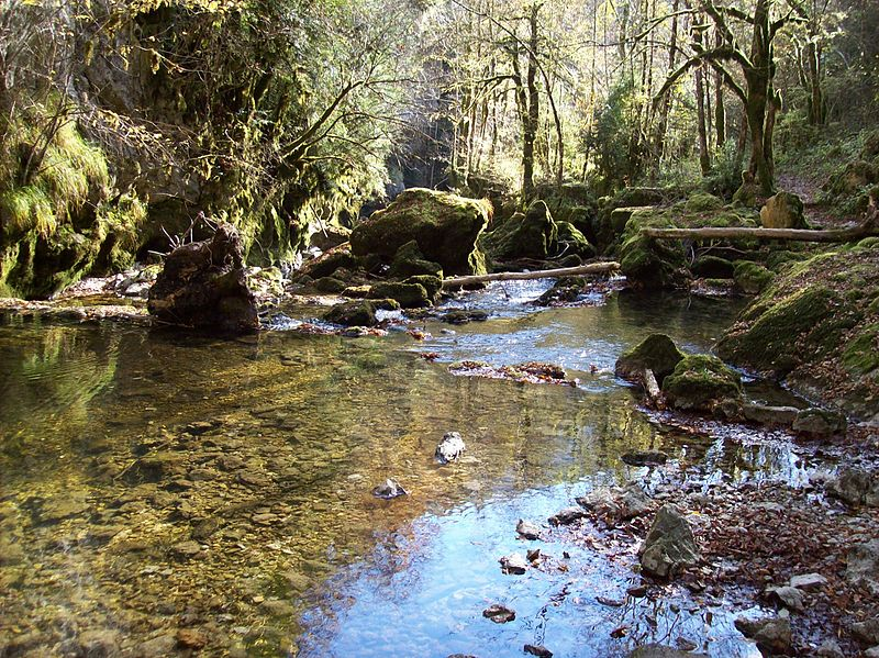 Séjour culturel et escapade en nature au cœur du Haut-Jura